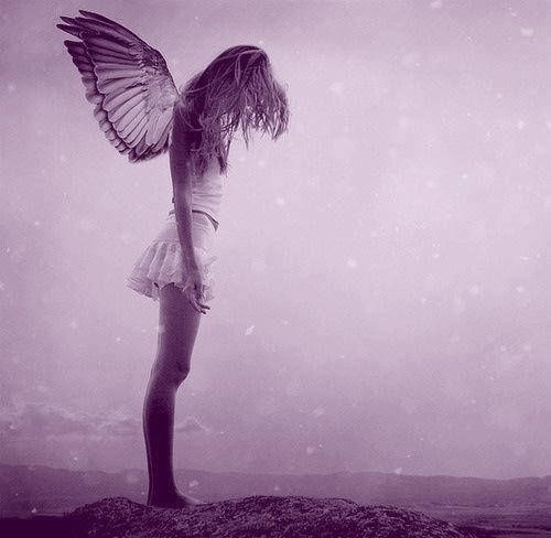 Day 143 - Angel Tears